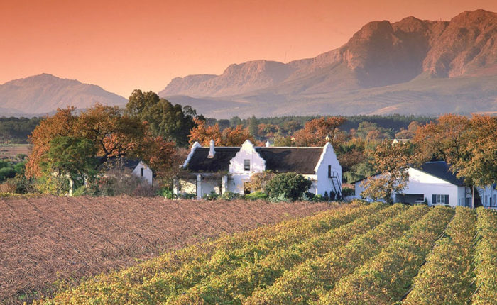 Paarl, Franschoek and Stellenbosch Winelands