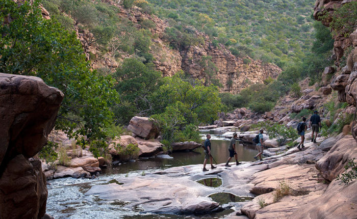 Marataba South Africa - Guided Safaris