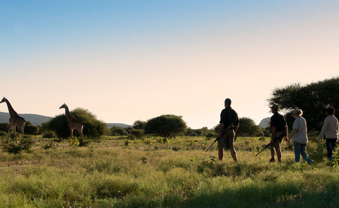 Marataba South Africa - Guided Safaris